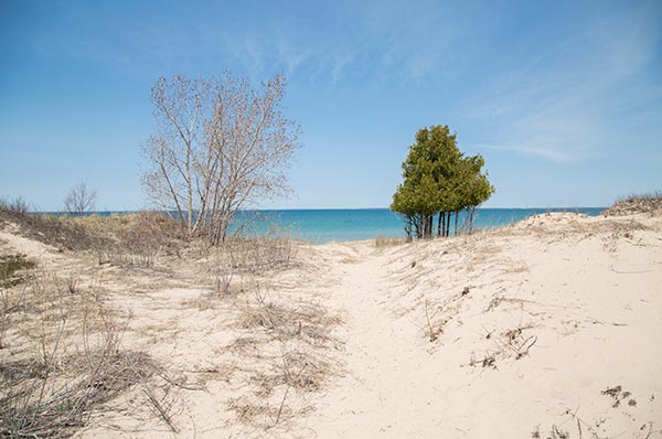 Sturgeon Bay Dunes sandy walkway